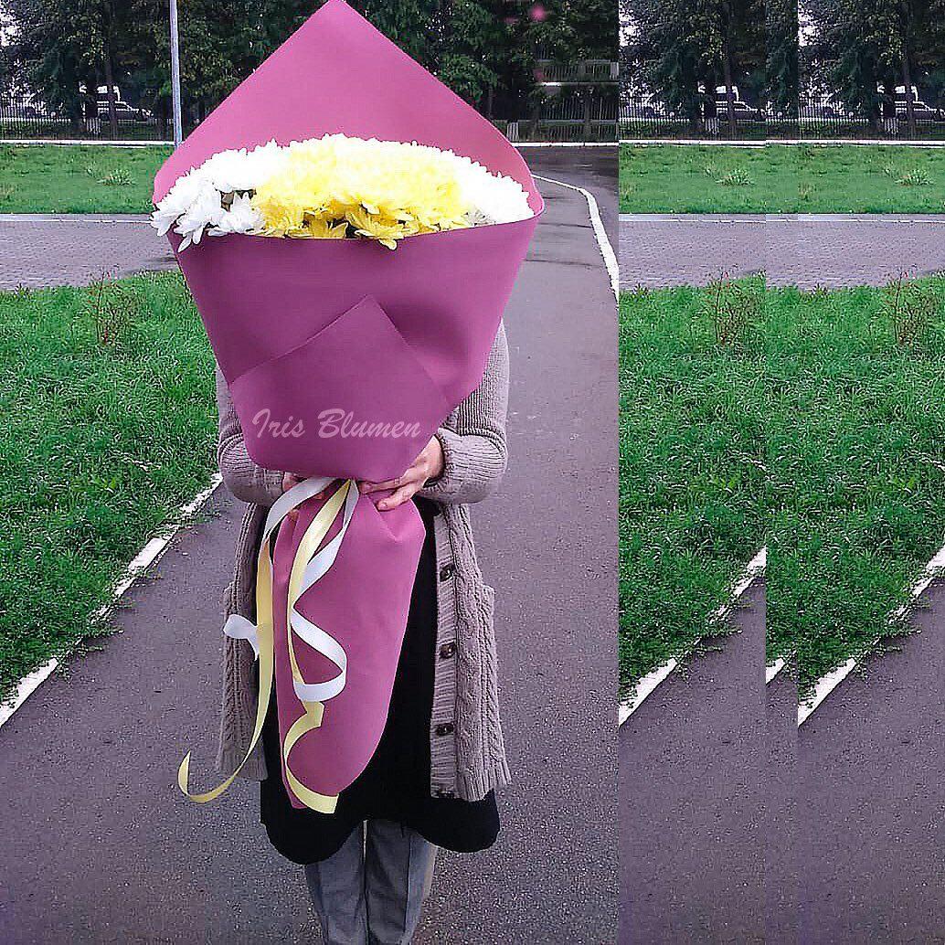 букет-гигант из хризантем2